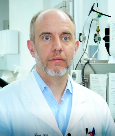 Prof. Dr. Paul Wilmes